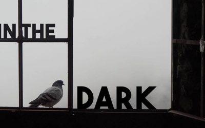 The Pigeon Patrol