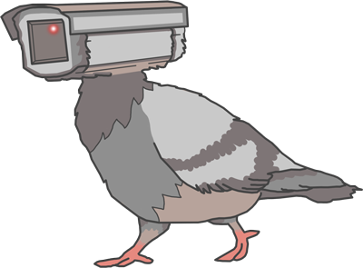 pigeons aren't real drone