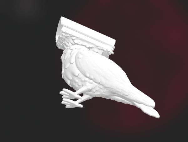 3D Camera Pigeon Model STL