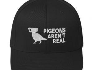 Pigeons Aren't Real Cap